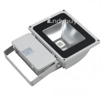 Lighting 100 Watt LED Floodlight-White Light